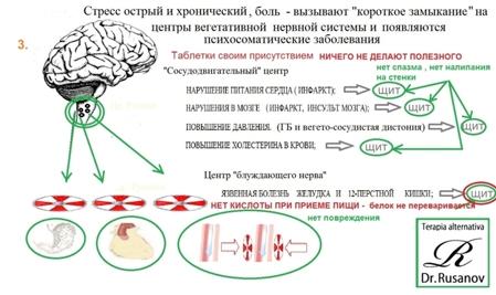 холестерин в общем анализе крови